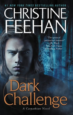 2010 Book Cover for Dark Challenge