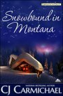 C.J. Carmichael's Snowbound in Montana
