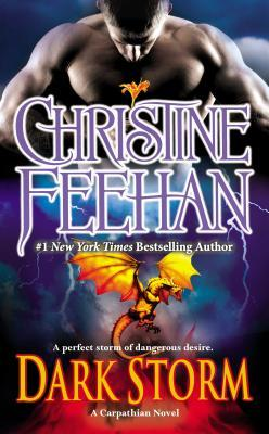 Dark Storm by Christine Feehan