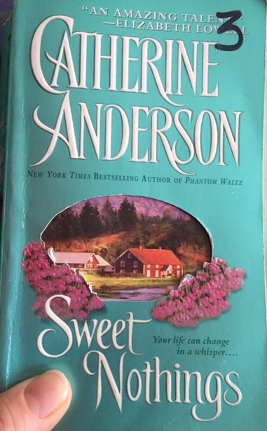 Sweet Nothings by Catherine Anderson. 2002 book cover