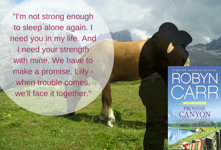 Book Quote from the part where Clay and Lilly finally make the decision to be together.